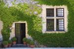 Schlingpflanze Haus Dordogne Frankreich