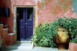 Topfpflanzen für ein Haus auf der griechischen Insel Santorini